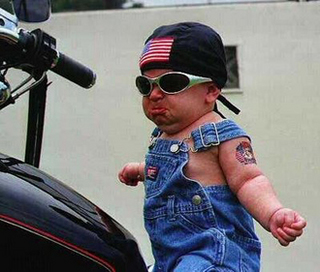 born to be wild2.jpg
